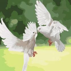 Набір для розпису за номерами Идейка Білосніжні голуби 40х40 см (КНО4149-mt)