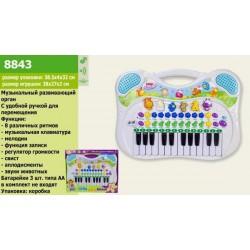 Муз. разв.орган бат., музыка, звуки животных, в кор. 39*32*4см